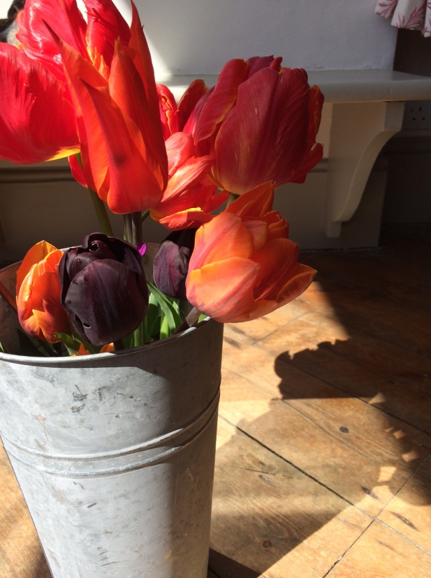 Tulips rescued from the wind and rain and brought indoors for us to enjoy earlier this week.