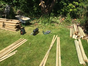 Wood and tools ready to go. We only got as far as making the two side panels. The plan is to have three bays, each roughly 1.2m square.