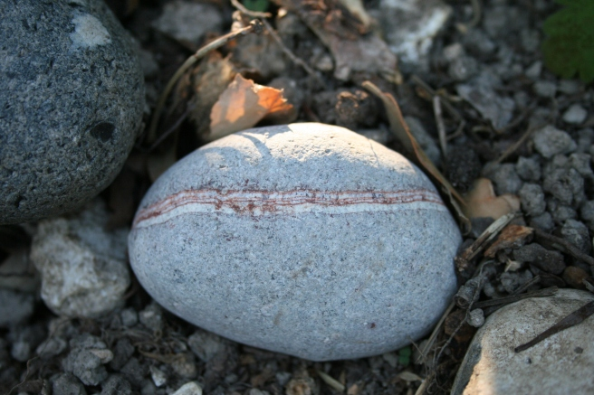 Each time I go to the beach, I come home with a pebble or two in my pocket. There's something about a warm, smooth stone in your hand.