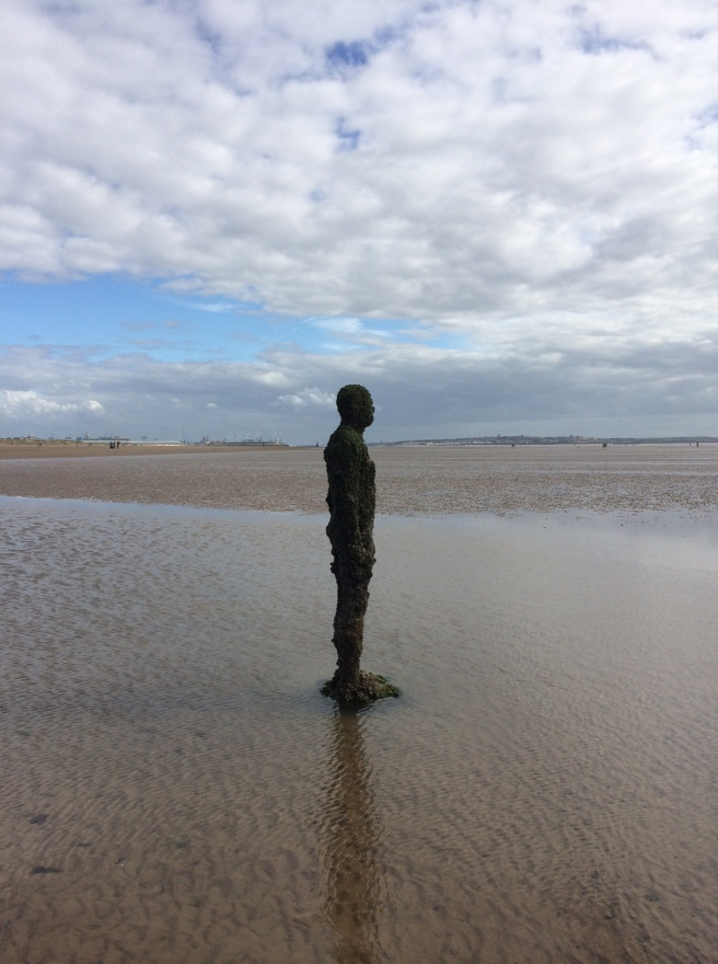 While we were in the north-west, we visited Crosby Beach to see Antony Gormley's Another Place. It is made up of 100 cast-iron, life size men (they were definitely men!) looking out to sea, spread out along the shore and emerge from the sea as the tide goes out. The figures look quite forlorn but impressive. I was struck by the sheer originality and the fact that the figures are now covered in sea plants – nature is softening these hard, man-made sculptures.
