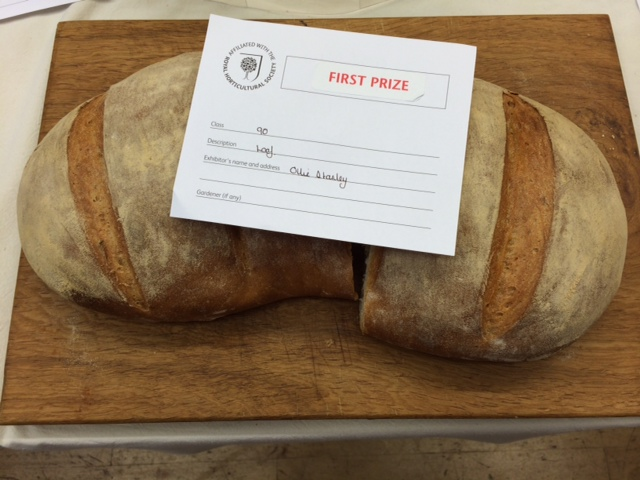 My son's prize- (and, to his delight, cash-) winning, ginormous bloomer.