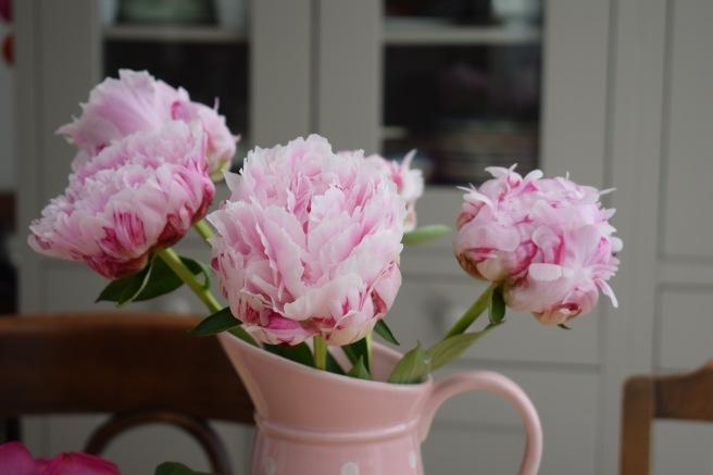In A Vase On Monday Acoastalplot